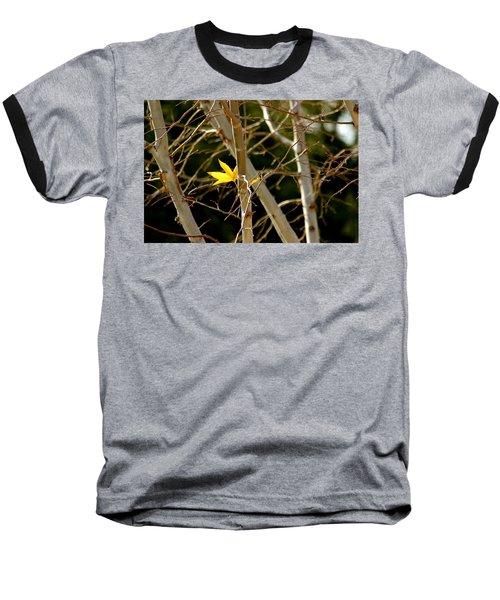 Last Leaf Baseball T-Shirt by Kume Bryant