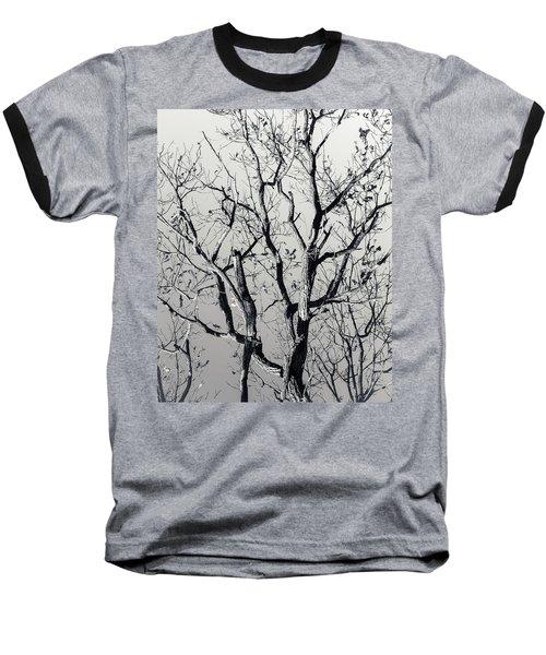 Last Light Oak Baseball T-Shirt