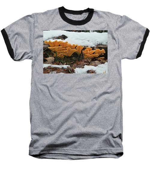 Last Mushrooms Of The Seasons Baseball T-Shirt