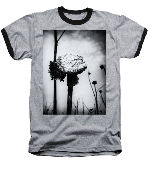 Last Years Beauty  Baseball T-Shirt