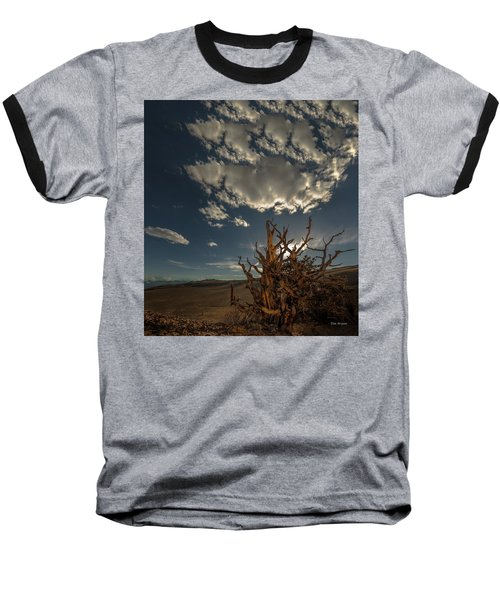 Late Afternoon In The Bristlecone Forest Baseball T-Shirt