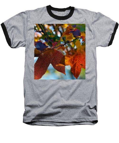 Late Autumn Colors Baseball T-Shirt