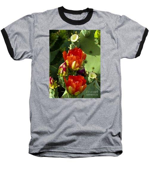 Late Bloomer Baseball T-Shirt by Kathy McClure