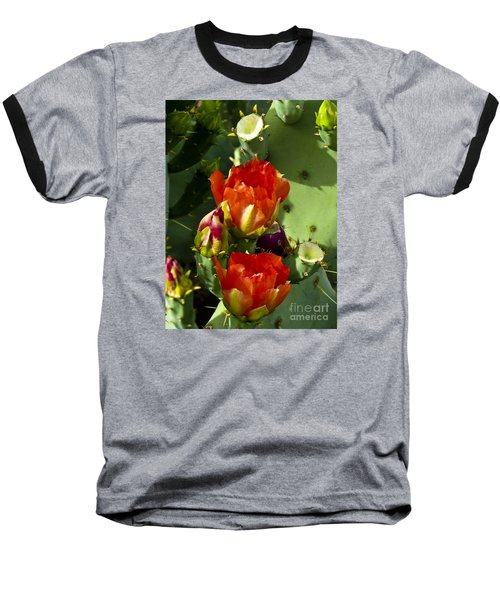 Late Bloomer Baseball T-Shirt