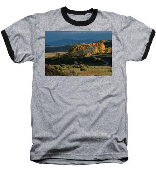 Late Stand Baseball T-Shirt by Dana Sohr