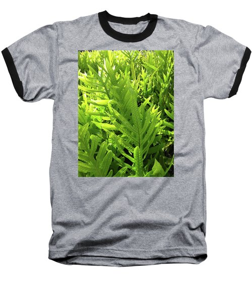 Lauae Fern Baseball T-Shirt