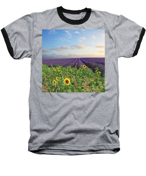 Lavender And Sunflower Flowers Field Baseball T-Shirt by Anastasy Yarmolovich