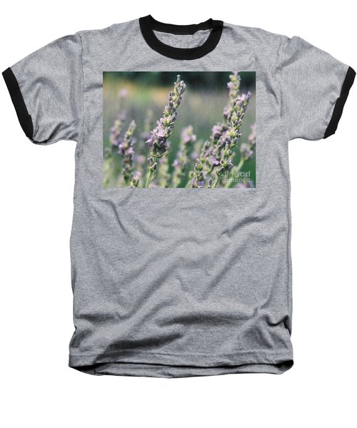 Baseball T-Shirt featuring the painting Lavender by Eric  Schiabor