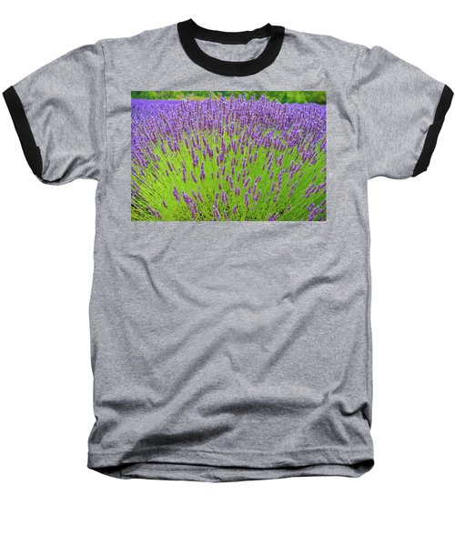 Baseball T-Shirt featuring the photograph Lavender Gathering by Ken Stanback