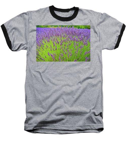 Lavender Gathering Baseball T-Shirt