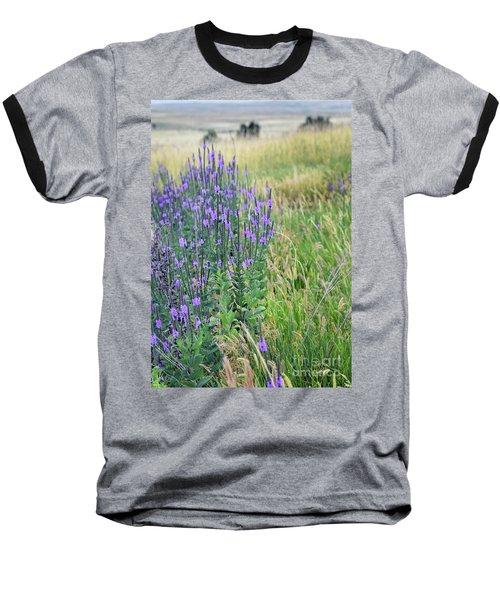 Verbena Hills Baseball T-Shirt