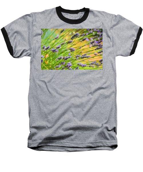 Lavender Baseball T-Shirt by Josephine Buschman