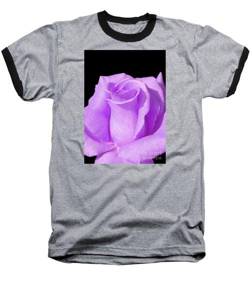 Lavender Rose Baseball T-Shirt