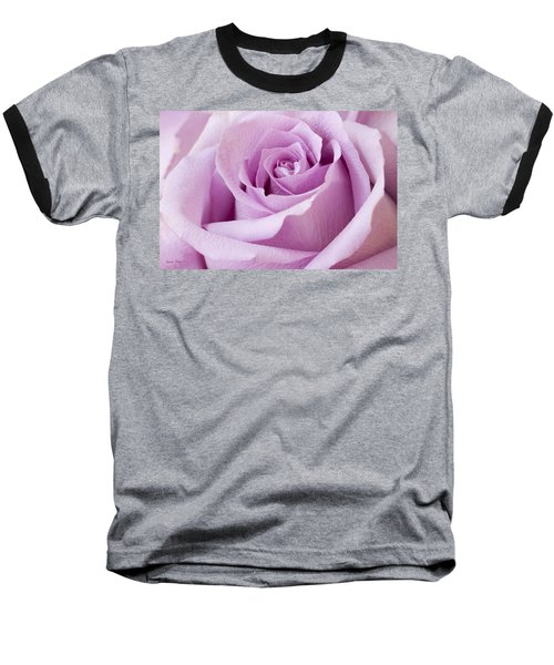 Lavender Rose Just About Perfect  Baseball T-Shirt by Sandra Foster