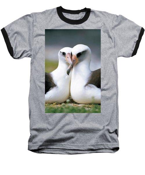 Laysan Albatross Phoebastria Baseball T-Shirt