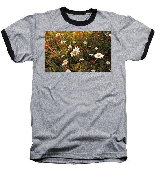 Lazy Days Daisies Baseball T-Shirt by Karen Horn