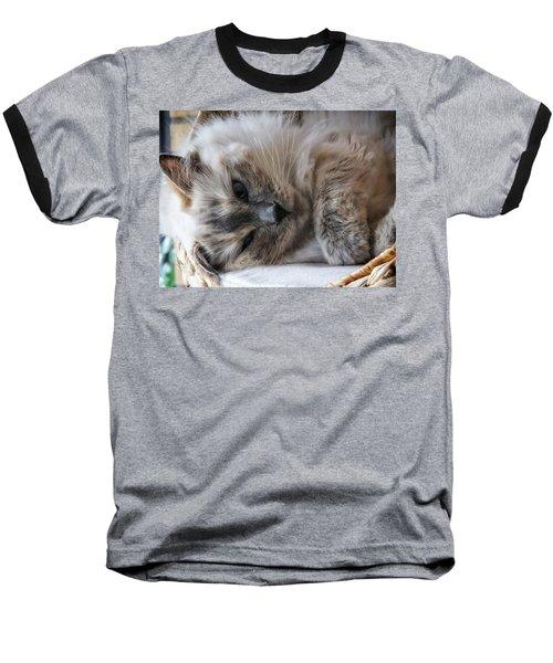 Lazy Kitty Baseball T-Shirt by Karen Stahlros