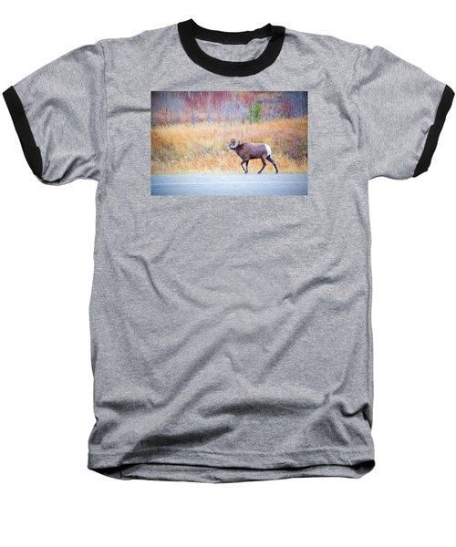 Leader Of The Herd Baseball T-Shirt