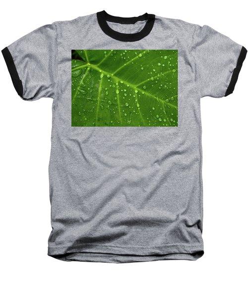 Leaf Drops Baseball T-Shirt