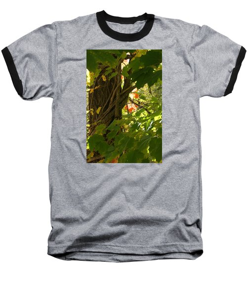 Leaf Peeping In Red Baseball T-Shirt by Margie Avellino