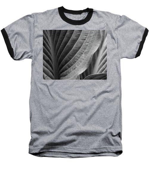 Leaf - So Many Ways Baseball T-Shirt by Ben and Raisa Gertsberg