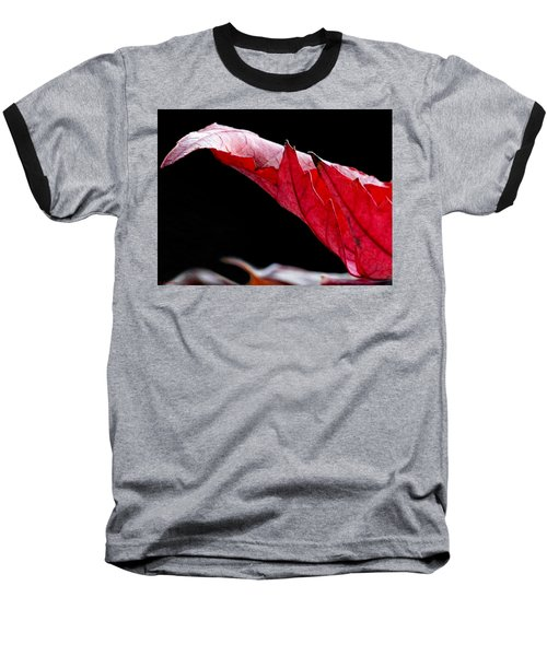 Leaf Study IIi Baseball T-Shirt