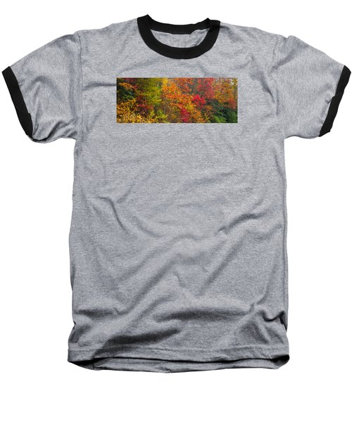 Baseball T-Shirt featuring the photograph Leaf Tapestry by Rob Hemphill