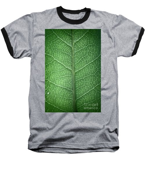 Leaf Vein Baseball T-Shirt