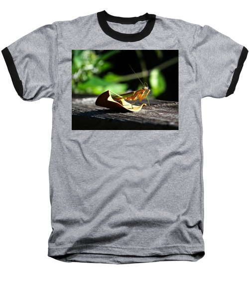 Leafy Praying Mantis Baseball T-Shirt
