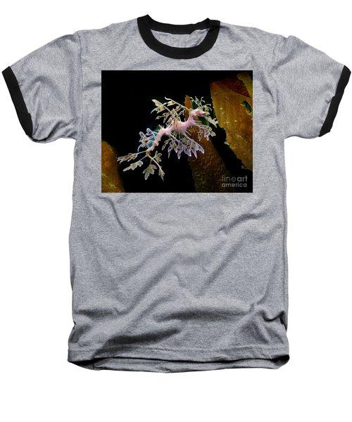 Leafy Sea Dragon Baseball T-Shirt