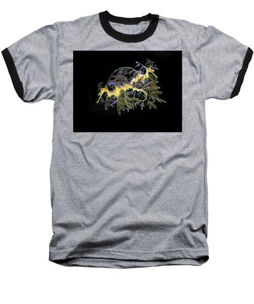 Leafy Sea Dragons Baseball T-Shirt by Anthony Jones