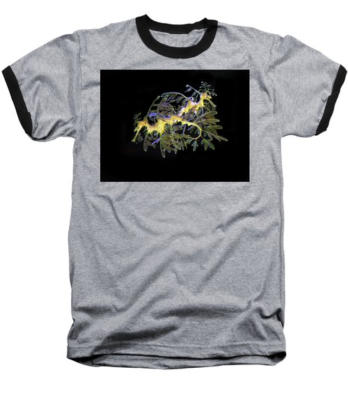 Leafy Sea Dragons Baseball T-Shirt