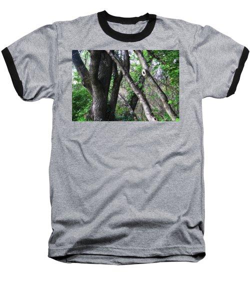 Lean On Me Baseball T-Shirt by Donna Blackhall