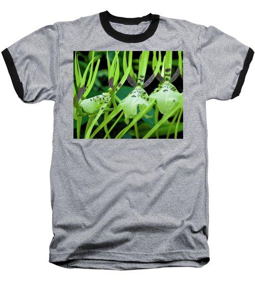 Leap Frog Baseball T-Shirt