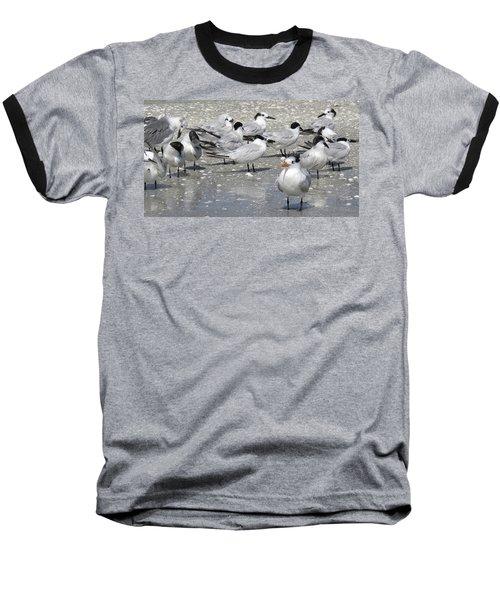 Least Terns Baseball T-Shirt by Melinda Saminski