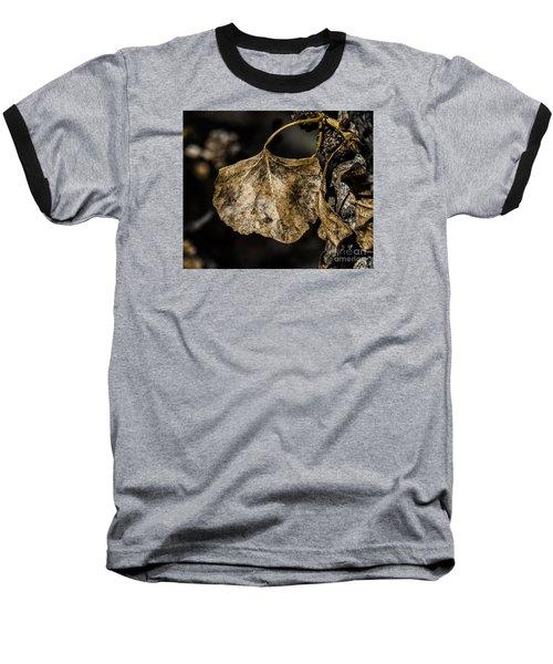 Leaves 4 Baseball T-Shirt