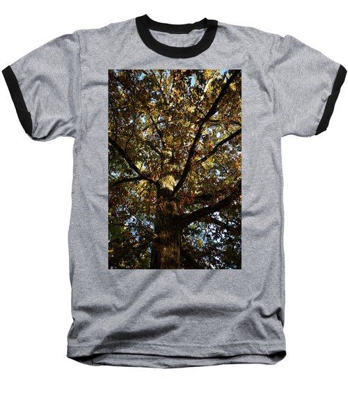 Leaves And Branches Baseball T-Shirt