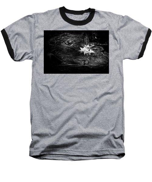 Leaves Baseball T-Shirt by David Cote