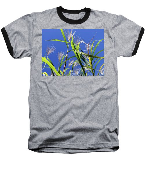 Leaves In The Wind Baseball T-Shirt