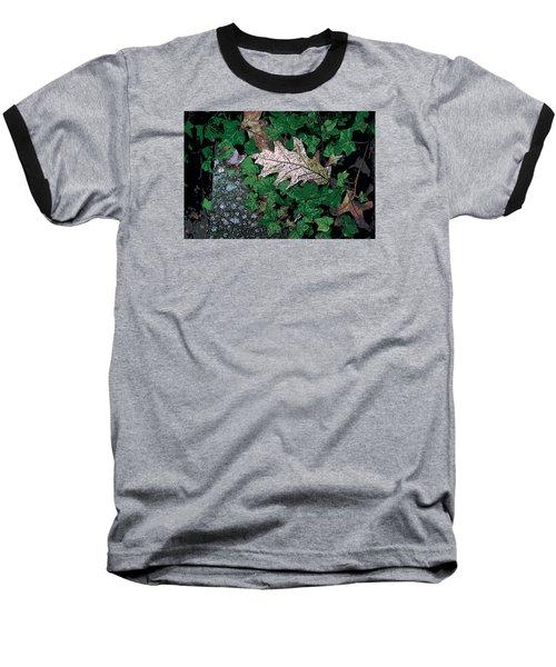 Leaves Baseball T-Shirt by John Rossman
