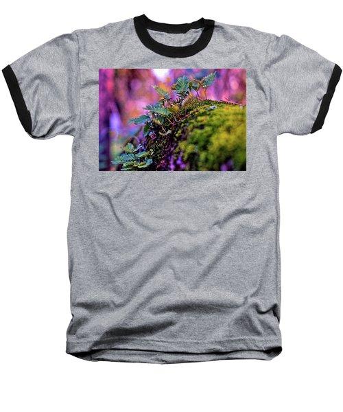 Leaves On A Log Baseball T-Shirt