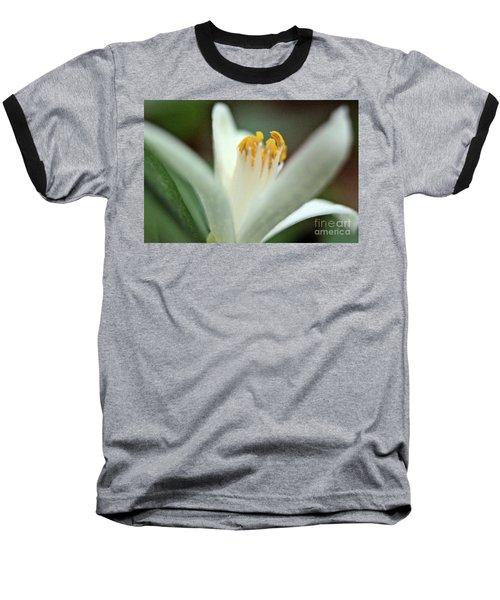Lemon Flower 2018 Baseball T-Shirt