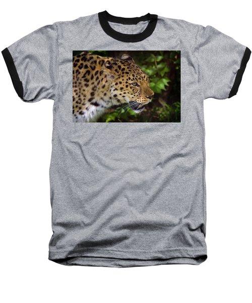Baseball T-Shirt featuring the photograph Leopard by Steve Stuller