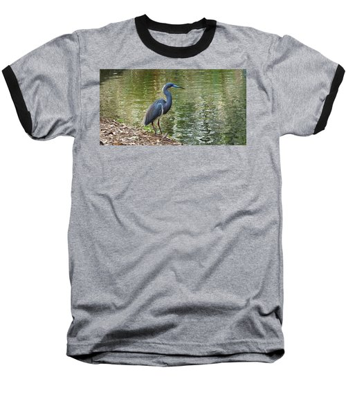 Lesser Blue Heron In Mating Plumage Baseball T-Shirt
