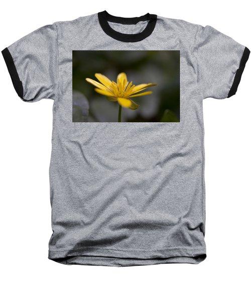 Lesser Celandine Baseball T-Shirt