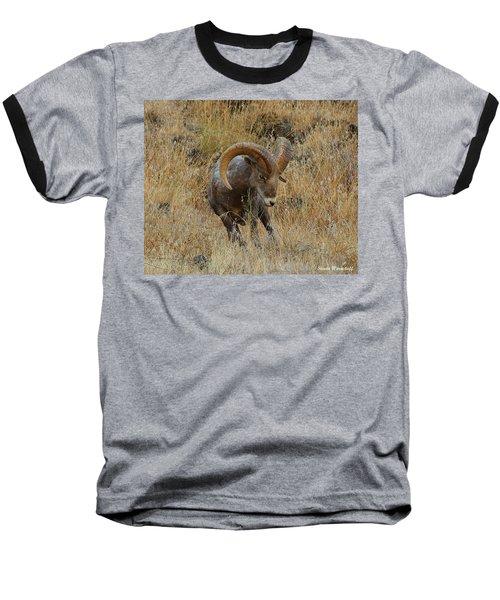 Let's Go II Baseball T-Shirt