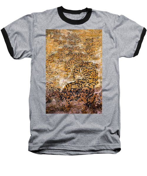 Lichen Abstract, Bhimbetka, 2016 Baseball T-Shirt by Hitendra SINKAR
