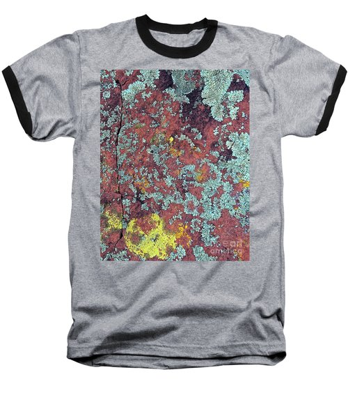 Lichen Colors Baseball T-Shirt by Todd Breitling