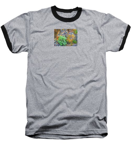 Baseball T-Shirt featuring the photograph Lichen Rainbow   by Michele Penner