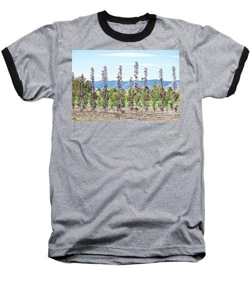 Life On A Tree Farm-foothills View #1 Baseball T-Shirt